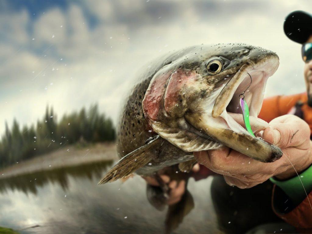 fishingoutcast-com